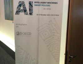 Risks of Artificial Intelligence on Society